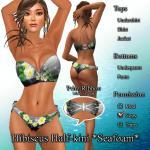 Hibiscus_Seafoam_512_DG.jpg