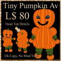 Tiny_Pumpkin-512.jpg