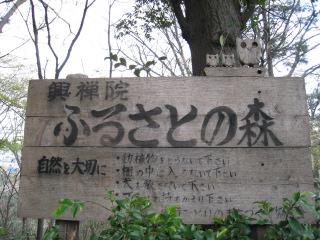 ふるさとの森 029