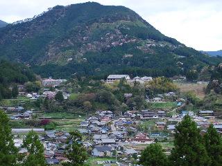 熊野古道 023