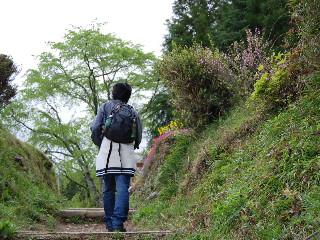 熊野古道 032