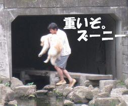 チキン☆ズーニー 012