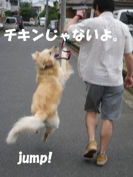 チキン☆ズーニー 023
