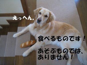 パンは食べるもの 007