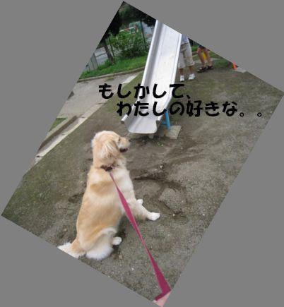 小枝ちゃん 006