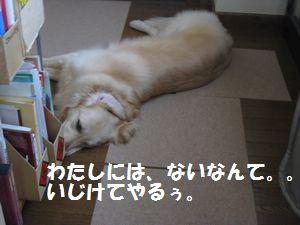 ふんばる犬 003