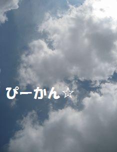 IMG_4519.jpg