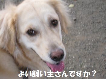 IMG_4547.jpg