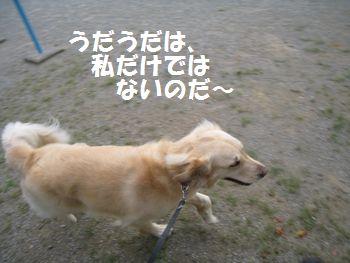 IMG_4856.jpg