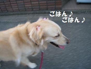 IMG_5118.jpg