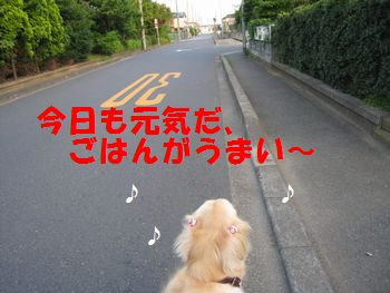 IMG_5122.jpg