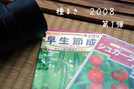 種まき2008第1弾