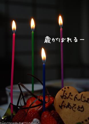 誕生日ケーキ2008