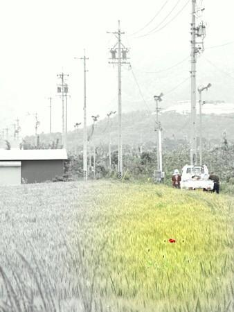 IMG_005855.jpg