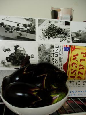nasu_convert_20080603182331.jpg