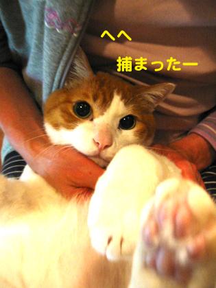 IMG_1912420.jpg