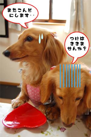 DearfunnysCafe-7_20080604.jpg