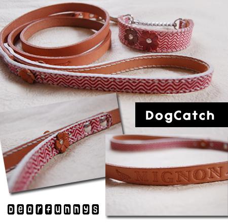 DogCatch_20080527.jpg