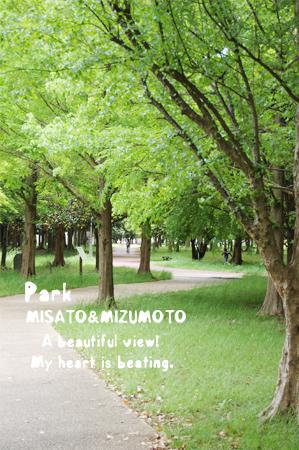 M_park-2_20080506.jpg
