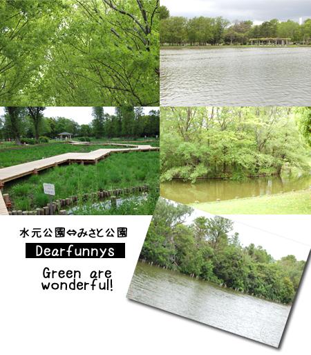 M_park-4_20080506.jpg