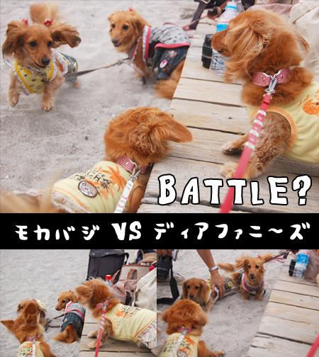 battle_20080727.jpg