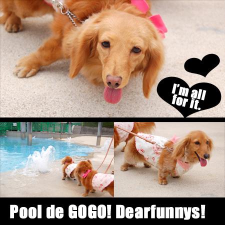 pool-4_20080513.jpg