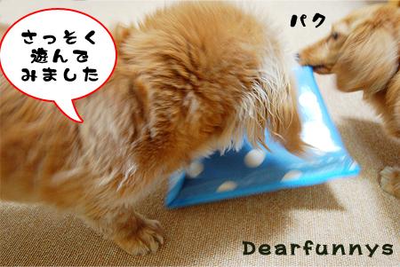 toilet2_20080628.jpg