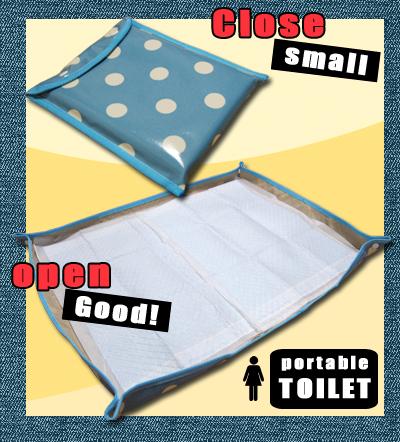 toilet_20080628.jpg