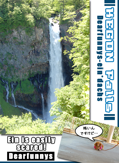 waterfall_20080618.jpg