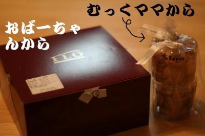 ルルちゃん他 002