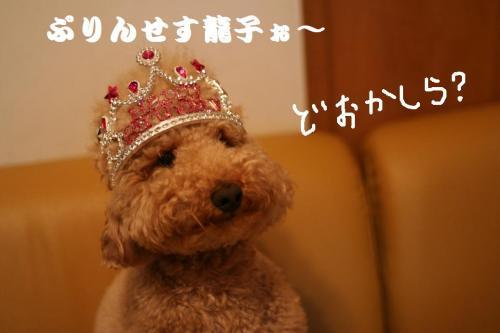 プリンセス龍子