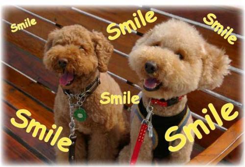 smileベンチで