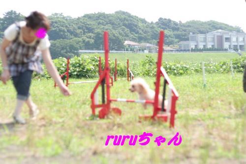 2008.7.13アジ練 002