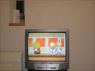 0509テレビ