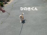 P1010126ブログ