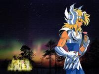 聖闘士星矢 (295)
