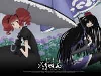 xxx Holic (16)