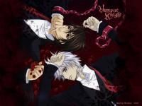 Vampire Knight (11)