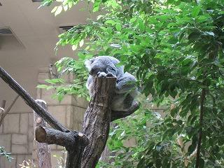 0428東山動植物園