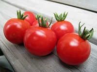 0806ミニトマト
