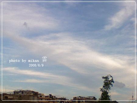 DSC01257.jpg