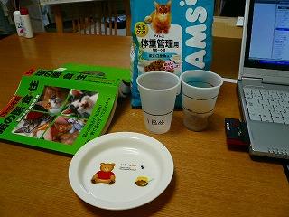 みーちゃんのご飯01