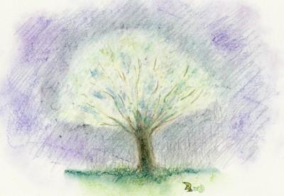 雨の中の桃の花08