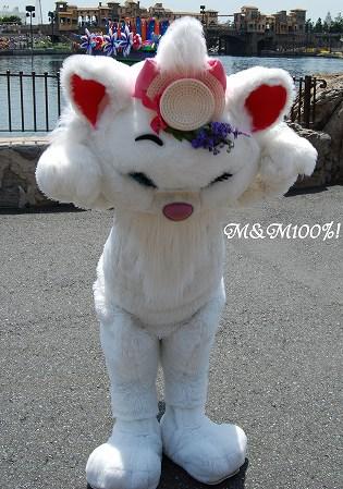 2008プリマ・マリー10