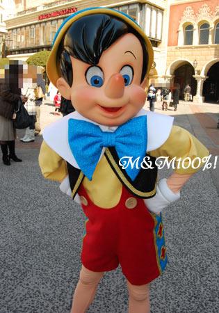2008シーズン・ピノキオ01