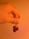 小さいマイクロ