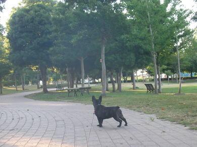 SANY0644.jpg