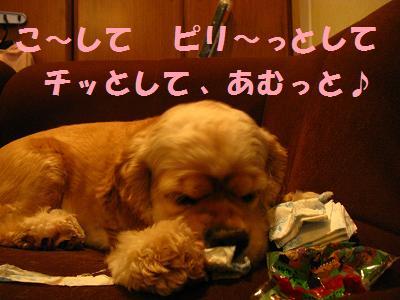 004_20080721214720.jpg