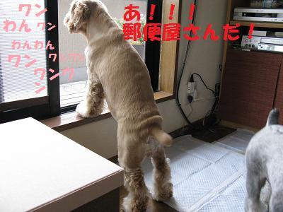 004_20080806002444.jpg