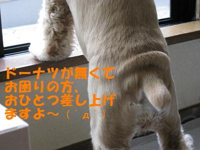 006_20080806002453.jpg